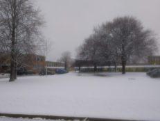Freezing February…