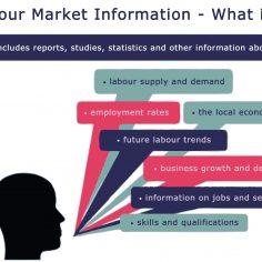 Labour Market Information – LMI